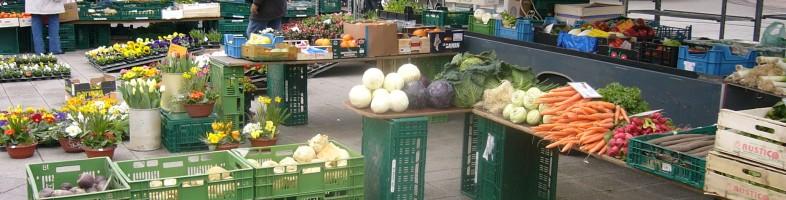 Le marchand de fleurs, marché de Kehl
