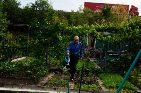 Jardins familiaux on ignore tout de la qualit des sols for Jardin familiaux