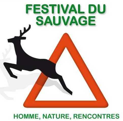 Un festival dans les Vosges pour s'aérer les neurones au grand air