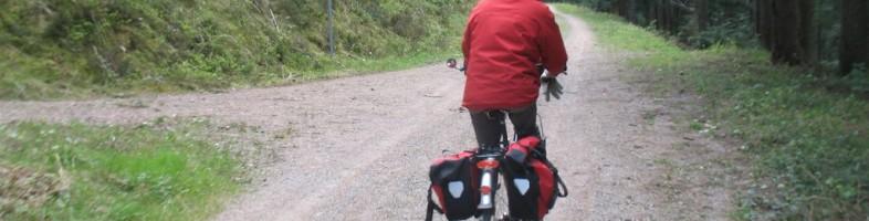 Les forêts européennes, particulièrement en Allemagne, font la joie des cyclistes proches de la nature. (Photo JH)