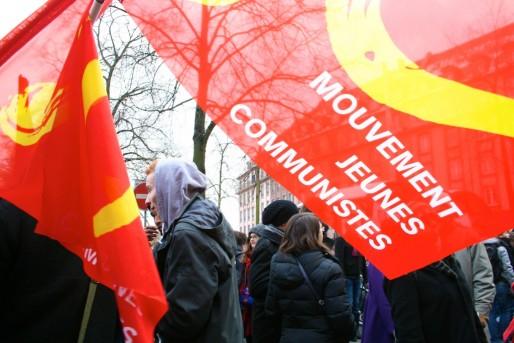 Parti communiste, Parti de gauche, Parti pirate, NPA étaient présents (MM)