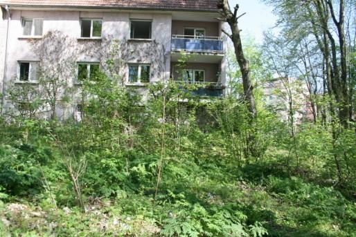 """Jardin en mouvement"", maille Brigitte à Hautepierre (Photo MM/Rue89 Strasbourg)"