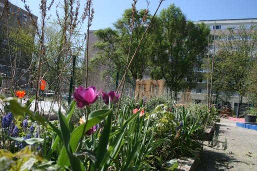 Jardin scolaire à l'école maternelle Jacqueline de Hautepierre (Photo MM/Rue89 Strasbourg)