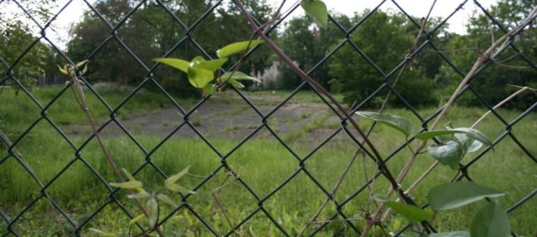 Longtemps délaissés, les quartiers ouest deviennent parc naturel urbain
