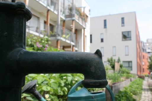 Les résidents d'Eco-Logis passent beaucoup de temps à l'entretien de leur jardin. (LJ / Rue89 Strasbourg)