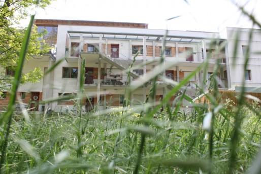 Eco-Logis, à l'îlot Lombardie à Neudorf, un petit coin de nature en pleine ville. (Photo LJ / Rue89 Strasbourg)