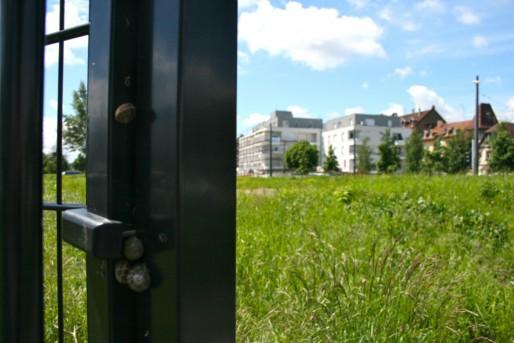 Sur ce terrain à deux pas de la cité et de la station de tram Kibitzenau, peut-être un lieu de convivialité bientôt (Photo MM / Rue89 Strasbourg)