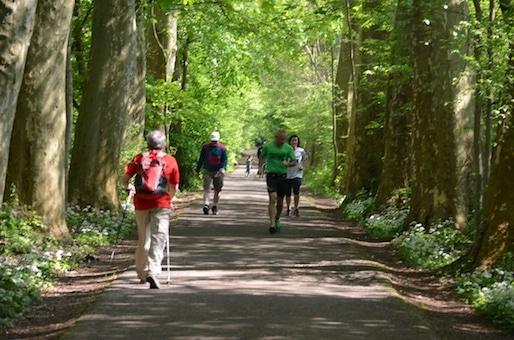Robertsau – La Wantzenau à pied: une superbe balade à faire entre amis