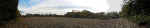 Le futur jardin en permaculture était cultivé en maïs jusqu'en 2012. Le bail de l'agriculteur n'a pas été renouvelé par la Ville de Strasbourg (Document remis)