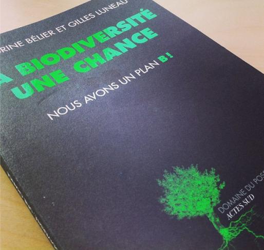 Publié chez Acte Sud le 9 octobre, le livre de Sandrine Bélier comporte 13 chapitres - 20€ (Photo MM / Rue89 Strasbourg)