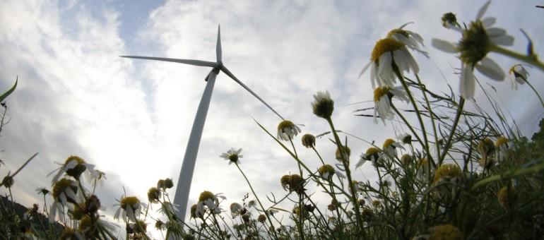 [vidéo] La longue marche de l'éolien en Alsace
