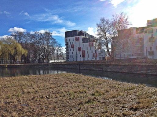 Jardins flottants de tailles diverses, propices à la biodiversité (Photo MM / Rue89 Strasbourg)
