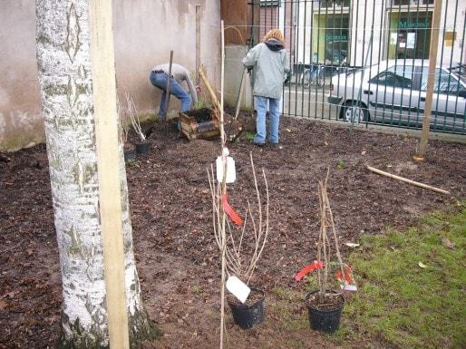 Le jardin partagé du square Saint Jean porté par l'AHQG (photo : AHQG)