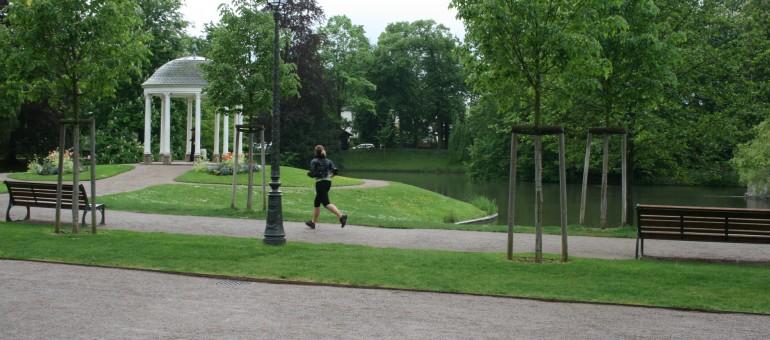 Vents violents : fermeture de plusieurs parcs à Strasbourg