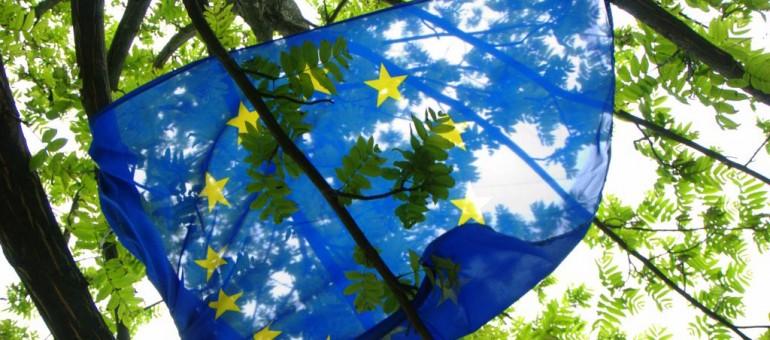 Européennes : moins d'un électeur sur trois a voté