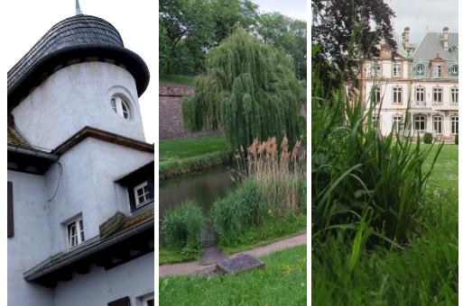 Deux balades pour découvrir le patrimoine excentré de Strasbourg