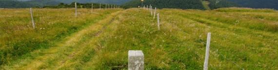 La frontière entre l'Alsace et la Lorraine, marquée par une borne prussienne (Photo Thomas Bresson / FlickR / cc)