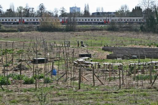Photos ce que cr ent les permaculteurs k nigshoffen for Jardin urbain permaculture