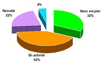 Le profil des malades participants au programme (Source: Eurométropole)