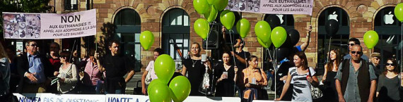 Lors de la manifestation contre la gestion de la SPA en octobre 2014.(photo ERA)