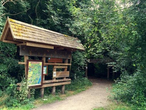 Les forêts de Strasbourg sont bien balisées et offrent une protection bienvenue contre le soleil. (Photo AM / Rue89 Strasbourg)