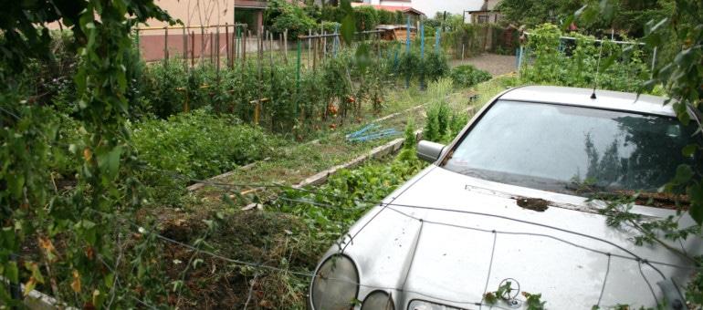 Autopromotion : un terrain au Neuhof cherche toujours preneurs