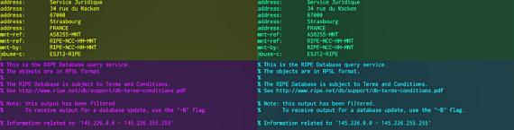 Le whois sur les adresses des DNA et d'Euro Information (capture d'écran)