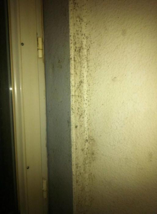L'humidité s'installent sur les murs des cellules. Les détenus bouchent les VMC en hiver pour avoir moins froid. (Photo : doc.remis)