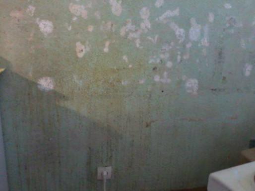"""""""J'avais demandé un kit pour frotter un des murs. Ça c'est le résultat après plusieurs minutes d'acharnement"""" (Photo: doc.remis)"""