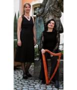 Voix et routes romanes : Peregrina