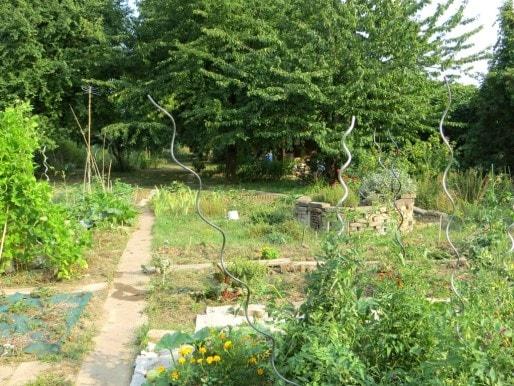 Un jardin de 2000m², avec potager et arbres fruitiers.