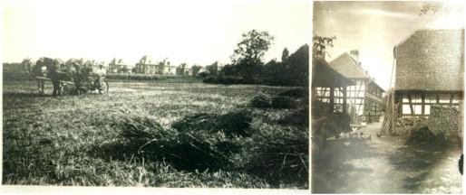 """Au sud du Jardin Haemmerlé, la ferme Flachenbourg voit progressivement ses activités disparaître au profit de la construction du """"quartier des villas"""" (Doc. """"La Flachenbourg"""")"""