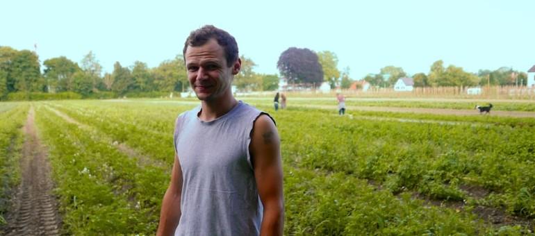 À la Robertsau, l'Eurométropole s'enorgueillit de sa politique maraîchère