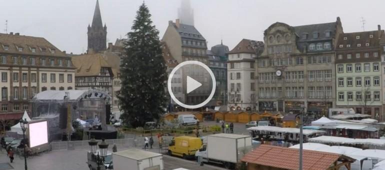 marché de noel strasbourg 2018 webcam Marché de Noël : une webcam sur le sapin marché de noel strasbourg 2018 webcam