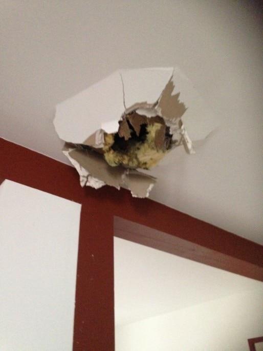 Le logement venait d'être fraîchement rénové. La famille n'espère plus un remboursement de l'assurance (Document remis)