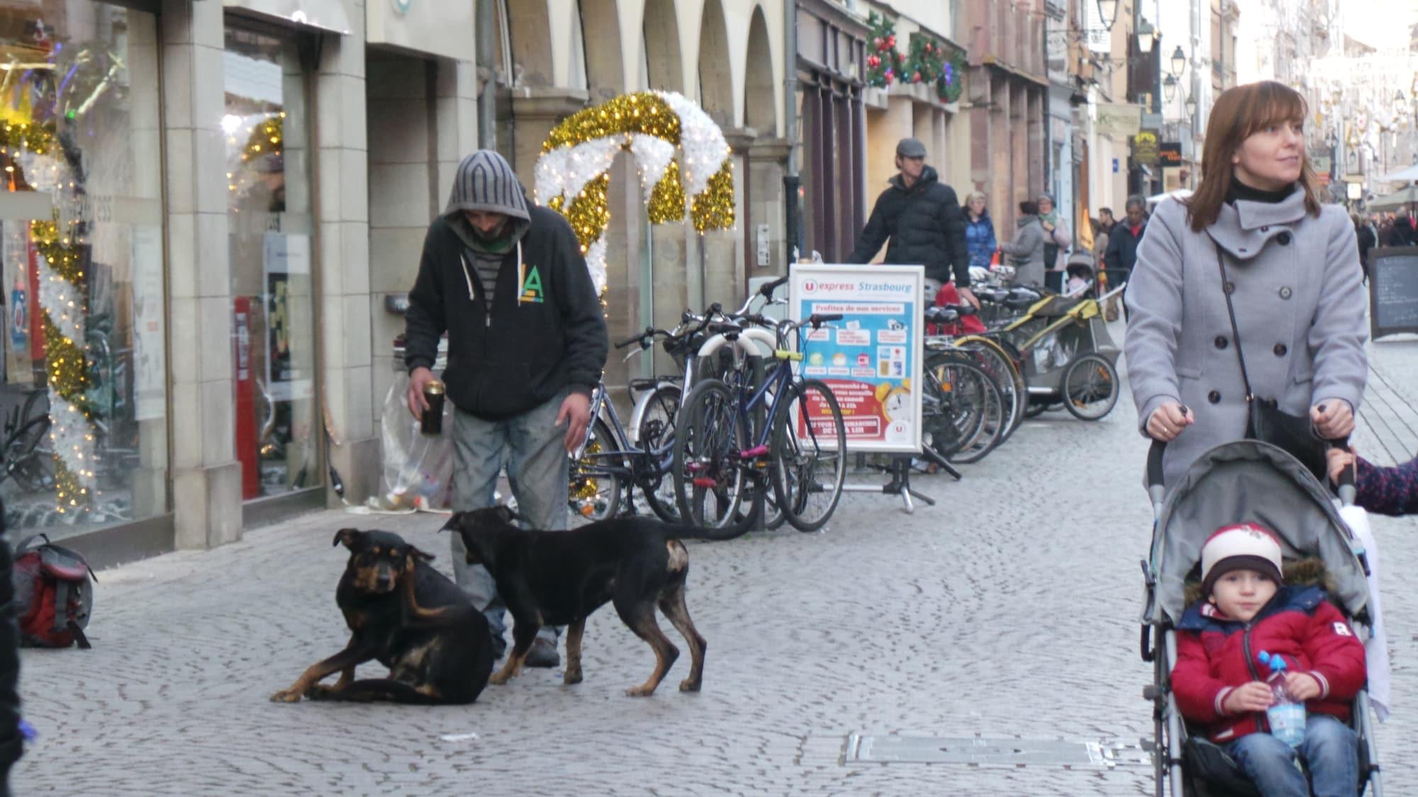 """Bient´t un numéro """"allo SDF mer§ants en détresse""""  Strasbourg"""