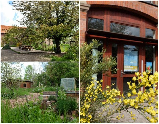 Ouvert au public, le jardin du CINE de Bussierre est un lieu idéal pour rêver et voir passer les saisons (Photos MM / Rue89 Strasbourg)