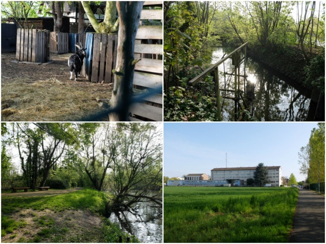 Sur la presqu'île du Doernel, entre Ill et Muhlwasser, l'île aux oiseaux, les terres agricoles et la caserne des CRS de la Robertsau (Photos MM / Rue89 Strasbourg)