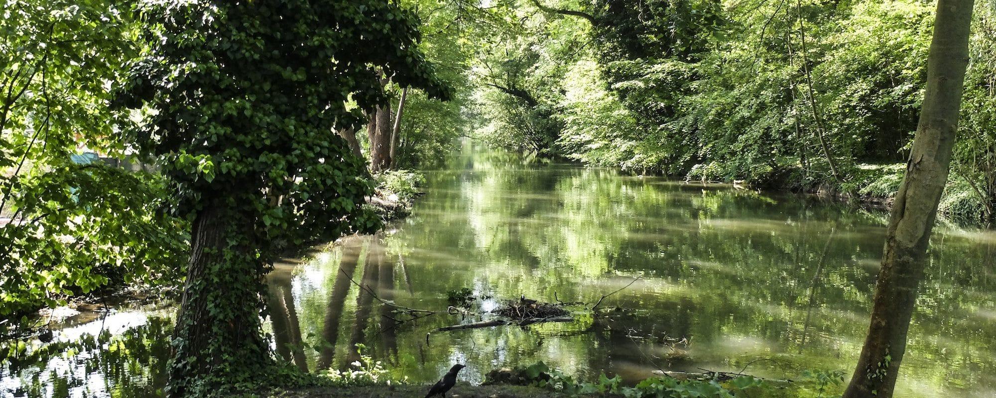 Balade nature : de Neudorf au Baggersee, en suivant le Ziegelwasser