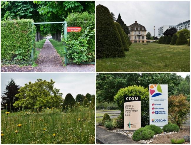 Parc Baumann à Illkirch (Photos MM / Rue89 Strasbourg)