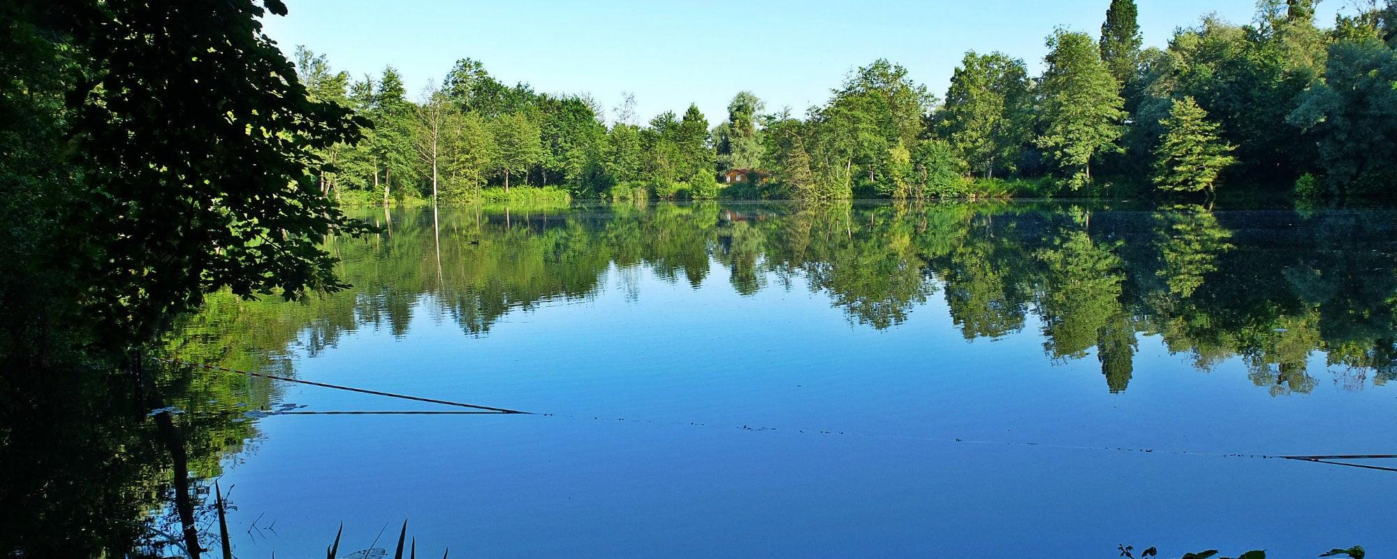 Balade nature au nord de Strasbourg, à la découverte des étangs de Schilick