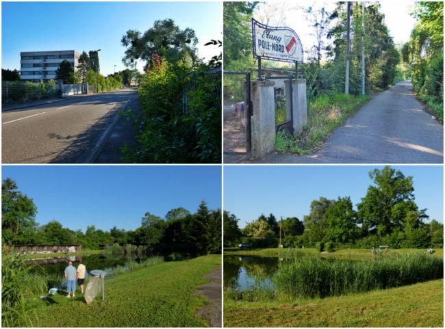 De part et d'autre de la rue du Château d'Angleterre, des étangs et clubs de pêche (Photos MM / Rue89 Strasbourg)