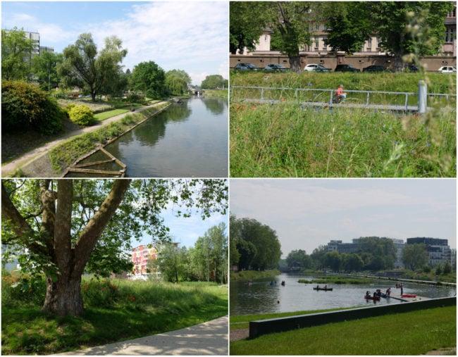 Parc du Heyritz, deux ans après son inauguration (Photos MM / Rue89 Strasbourg)