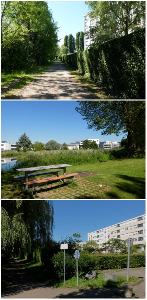 Balade côté jardins, dans le quartier du Marais à Schiltigheim (Photos MM / Rue89 Strasbourg)
