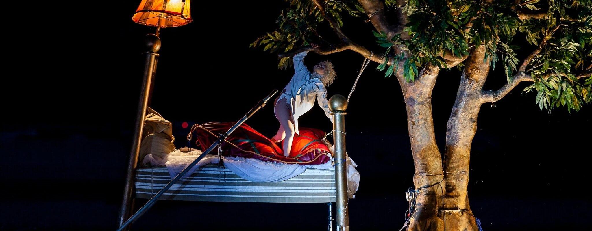 Du 12 au 14 août, trapèze, théâtre aquatique et déambulations dans les rues de Strasbourg