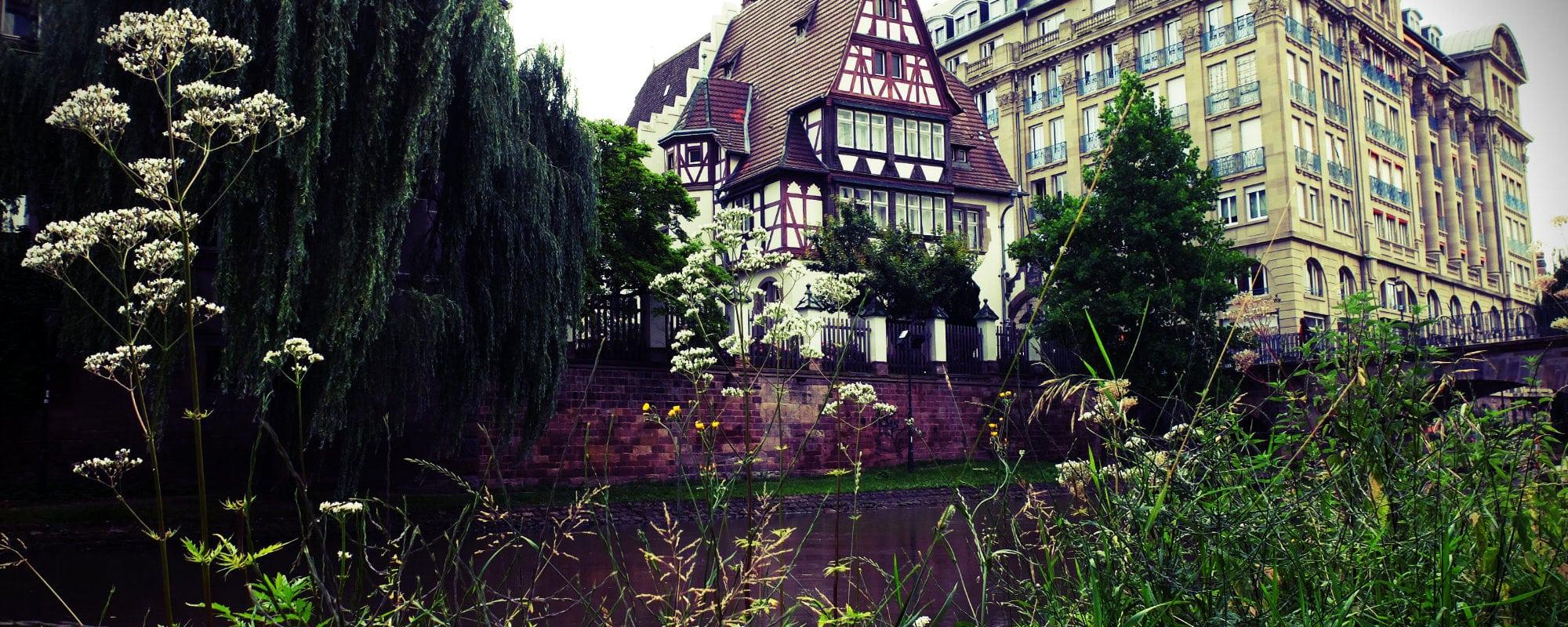 Balade nature… au centre-ville de Strasbourg !