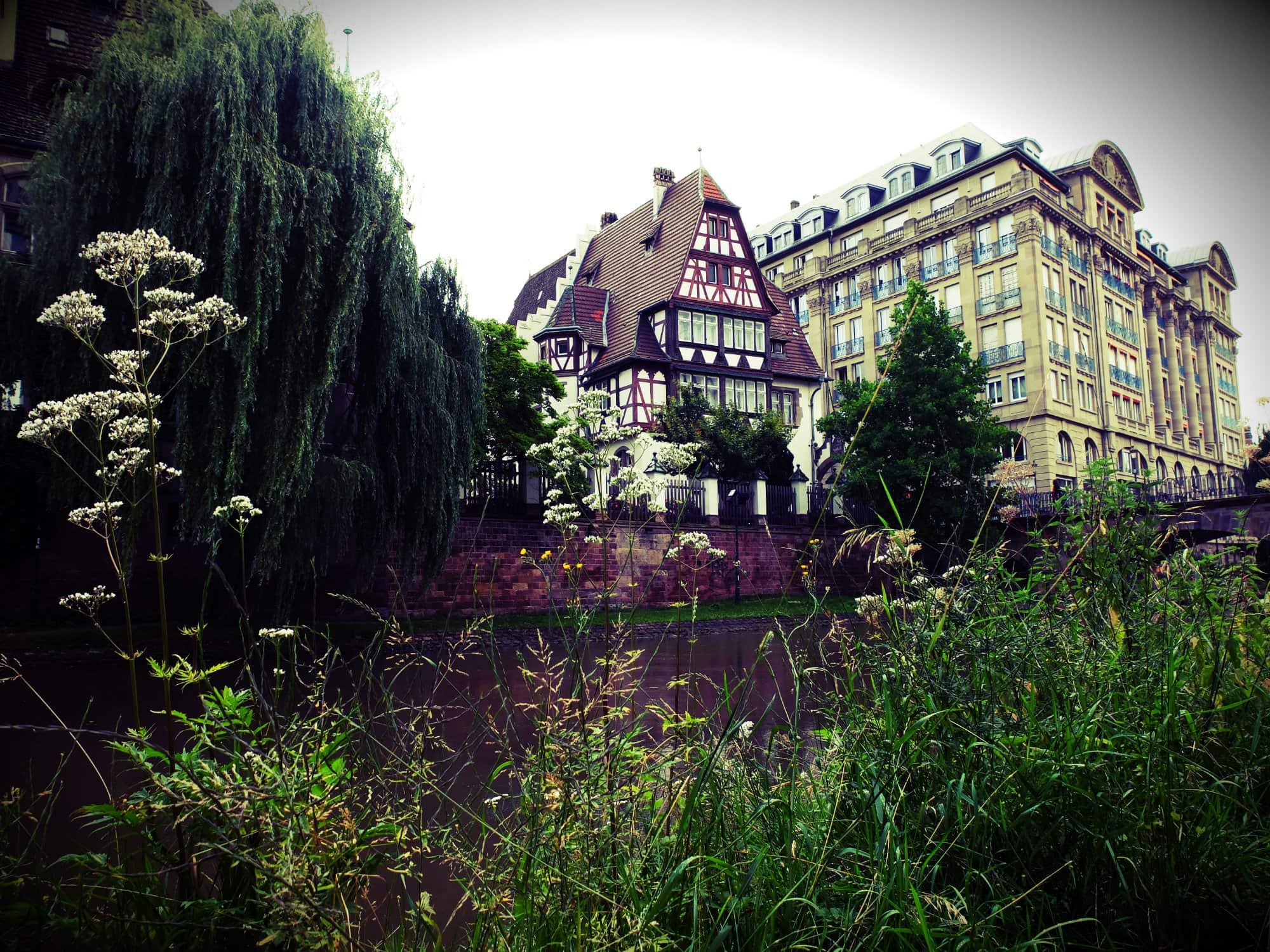 Balade nature au centre ville de strasbourg for Ville nature