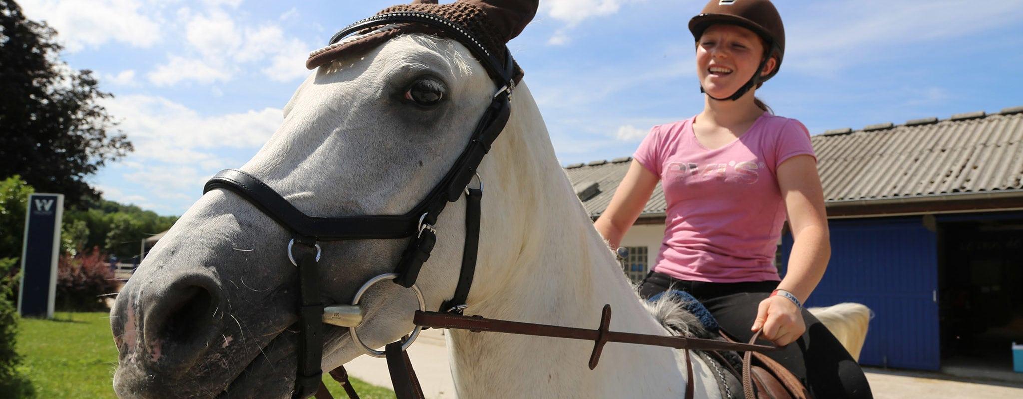 Ce que l'on murmure aux oreilles des chevaux du Waldhof
