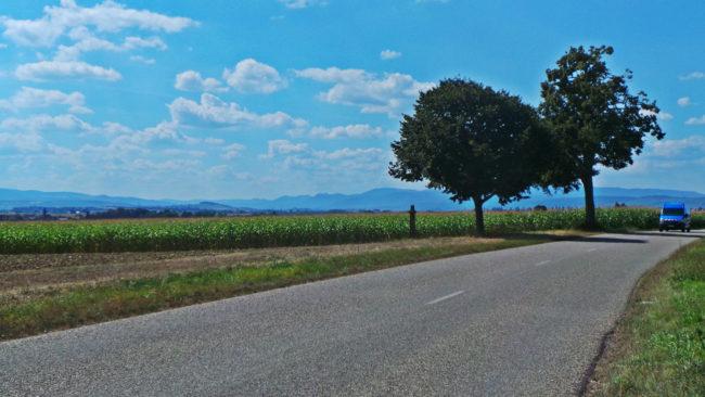 Le GCO va passer dans le Kochersberg, comme ici près d'Offenheim (Photo PF / Rue89 Strasbourg)