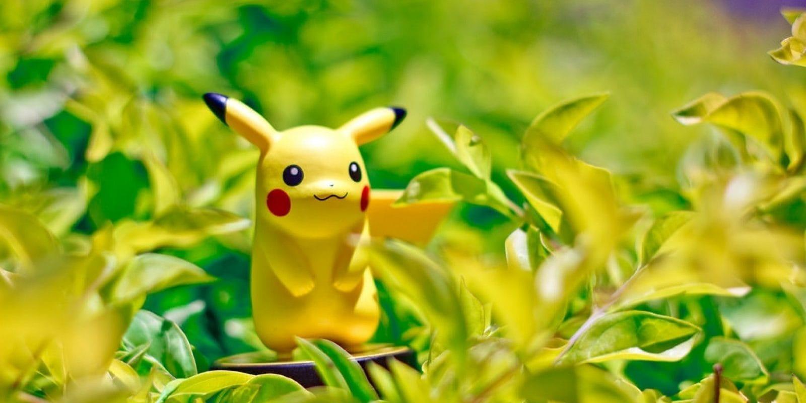 Comment les chefs d'établissements gèrent ces nouveaux élèves, les Pokémons